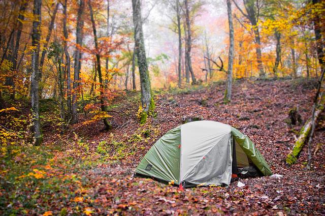 【山梨】避暑に最適!都心から近い標高1400mの「みずがき山森の農園キャンプ場」